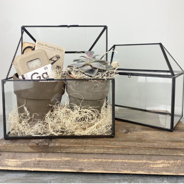 Glass Terrarium for the Gardner