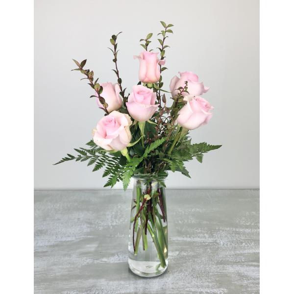 1/2 Dozen Premium Pink Roses