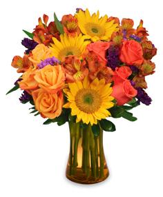 Sunflower Sampler