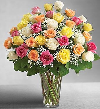 Ultimate Elegance Premium Long Stem Assorted Roses