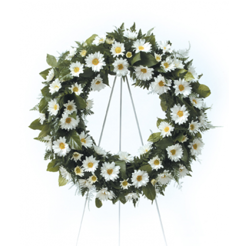 White Daisy Wreath BCF4-31