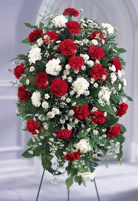 Crimson & White Standing Spray