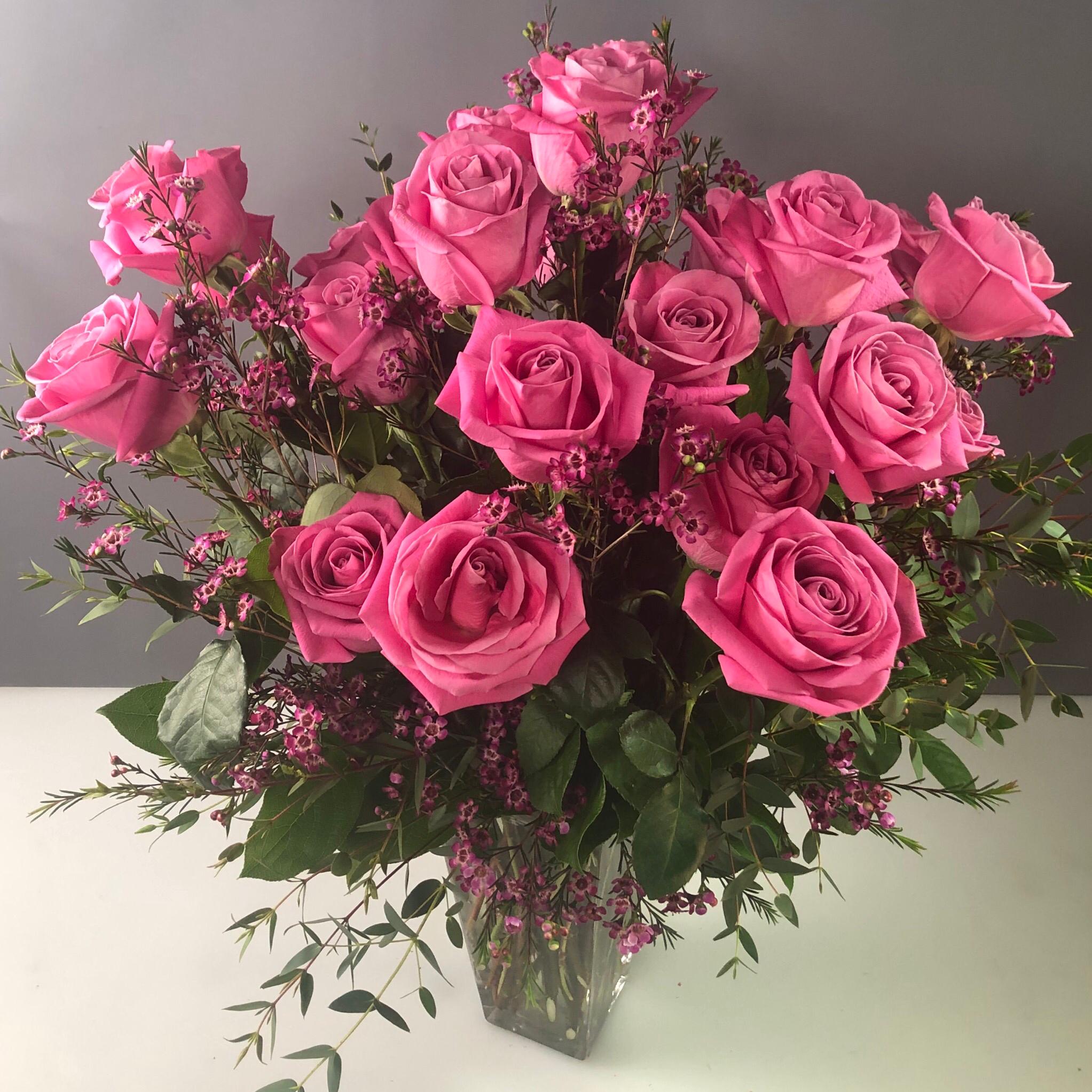 Roses Two Dozen Color XTall