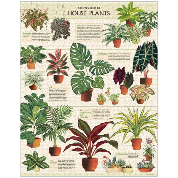 House Plants Puzzle