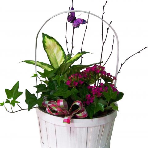 Sparks Florist® - Sparks Petite European Basket Garden