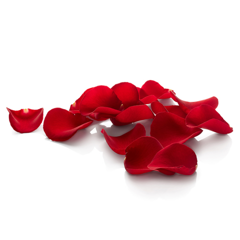 Sparks Florist® - Sparks Loose Rose Petals