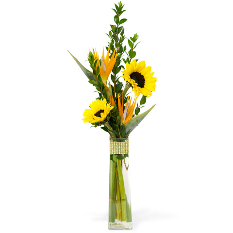 Reno & Sparks Flower Delivery | Sparks Florist® - Reno Sunflower Paradise