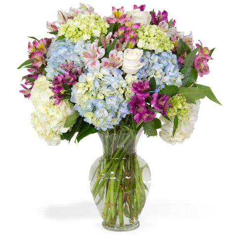 Sparks Florist® - Reno Lavish Blossoms