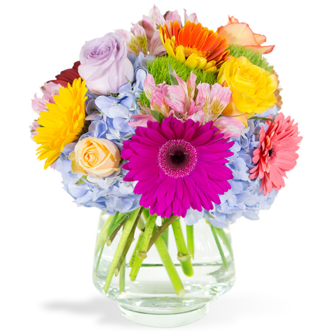 Sparks Florist® - Sparks Brighten Your Day Bouquet