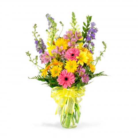 Reno & Sparks Flower Delivery | Sparks Florist® - Sparks Celebration Flemish