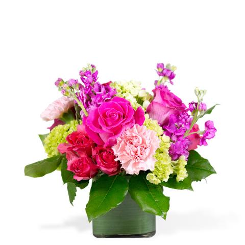 Reno & Sparks Flower Delivery | Sparks Florist® - Sparks Passion