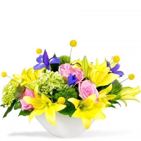 Reno & Sparks Flower Delivery | Sparks Florist® - Sparks Vibrant Blooms