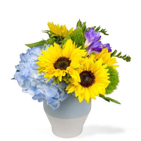 Sparks Florist® - Reno Van Gogh's Garden