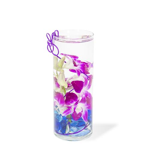 Reno & Sparks Flower Delivery | Sparks Florist® - Sparks Orchid Everbloom
