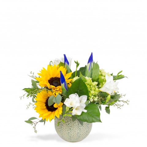Sparks Florist® - Reno Sunflower Splash