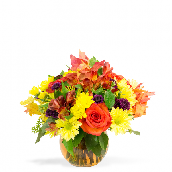 Reno & Sparks Flower Delivery | Sparks Florist® - Reno Colorful Fall Collage (free standard delivery* w/ code FALL18)