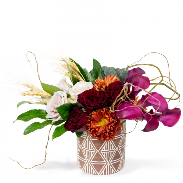 Sparks Florist® - Sparks Safari Jewel (free standard delivery* w/ code FALL18)