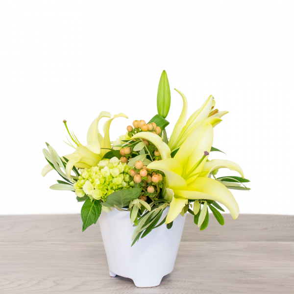 Sparks Florist® - Sparks Winter Fortune (free standard delivery* w/ code WINTER18)