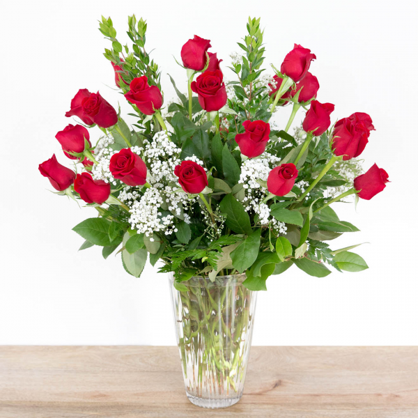 Long Stem Red Roses<br><i>2 dozen roses</i><br />