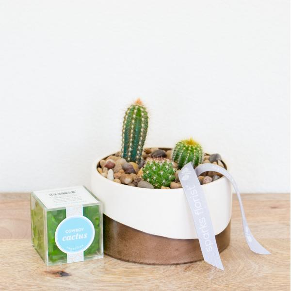 Reno & Sparks Flower Delivery | Sparks Florist® - Sparks High Desert Duo