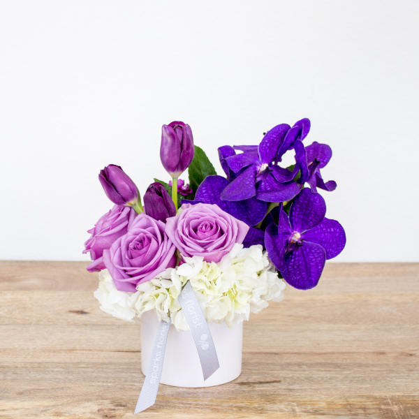 Reno & Sparks Flower Delivery | Sparks Florist® - Sparks Orchid Enchantment - Small