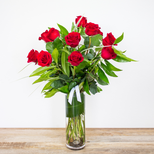 Modern 1 Dozen Long Stem Red Roses