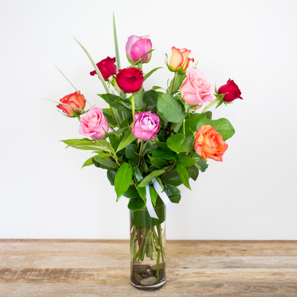 Long Stem Color Roses<br><i>1 dozen modern roses</i>