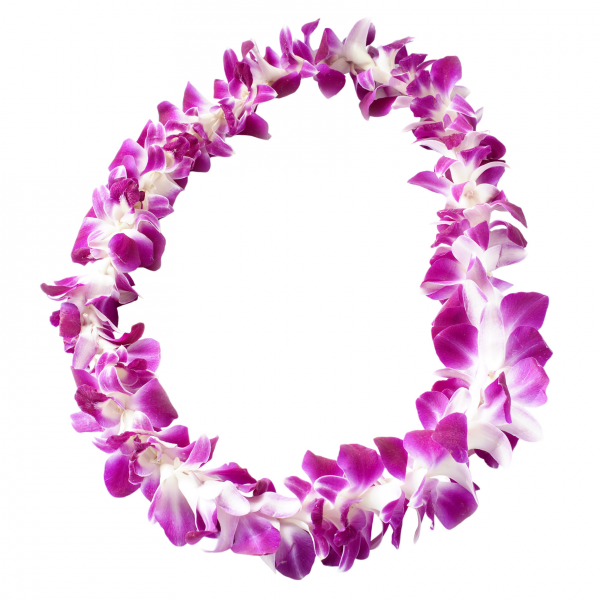 Dendrobium Orchid Lei<br><b>PREORDER</b>