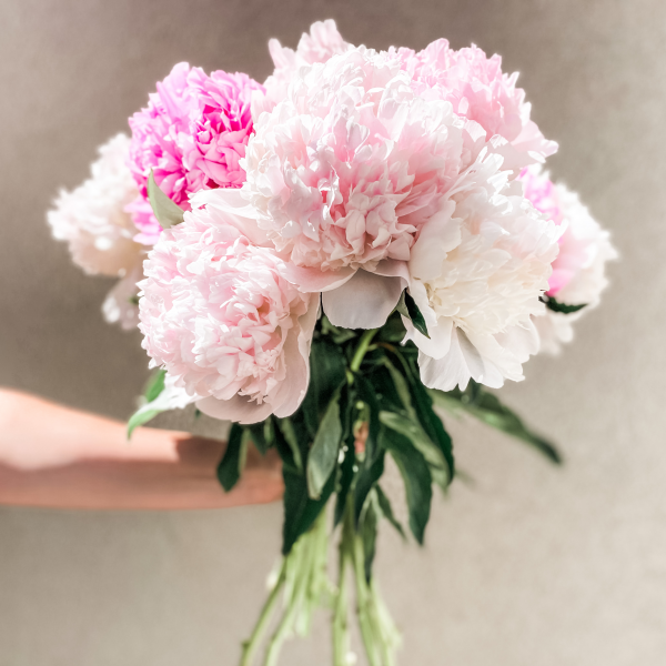 Peonies Bouquet - SPECIAL EDITION