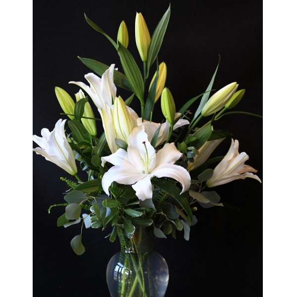 Distinguished White Lilies