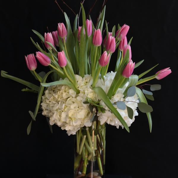 Twigs & Tulips