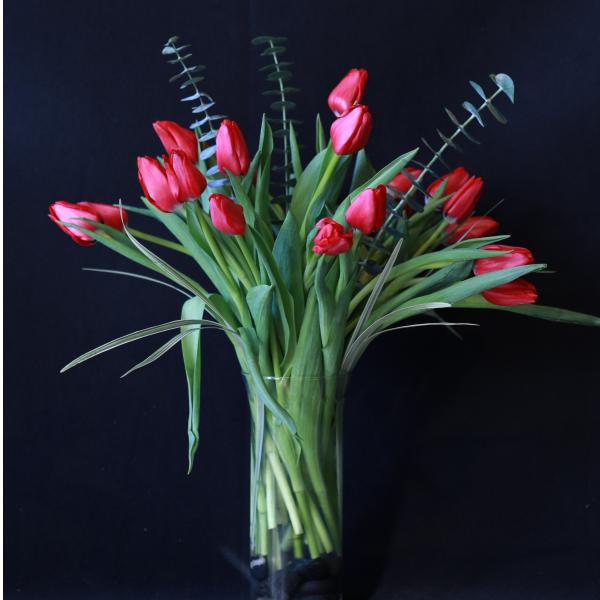 Fresh Cut Tulips in a vase