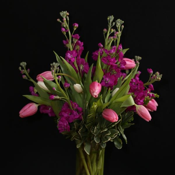 Tulips & Stock