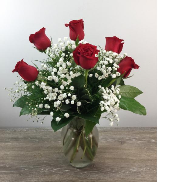 Six Premium Long Stemmed Roses
