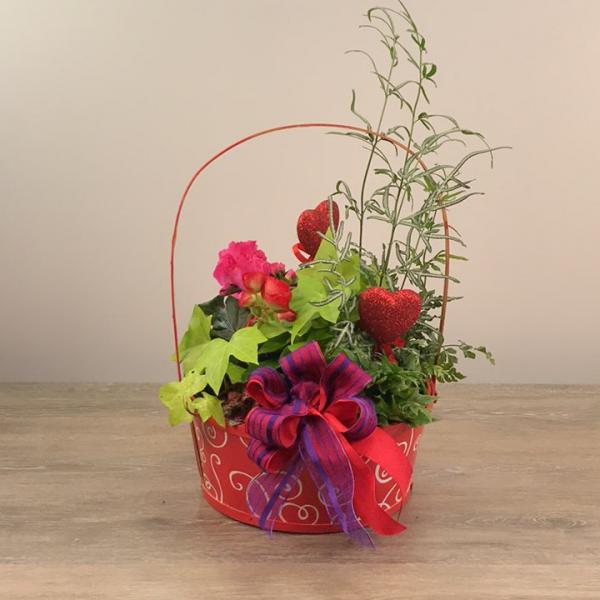 George's European Valentine's Planter