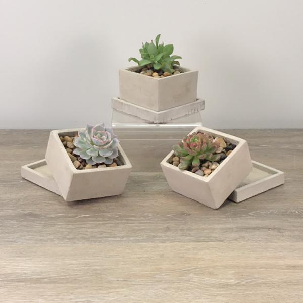 George's Minimalist Succulent Planter