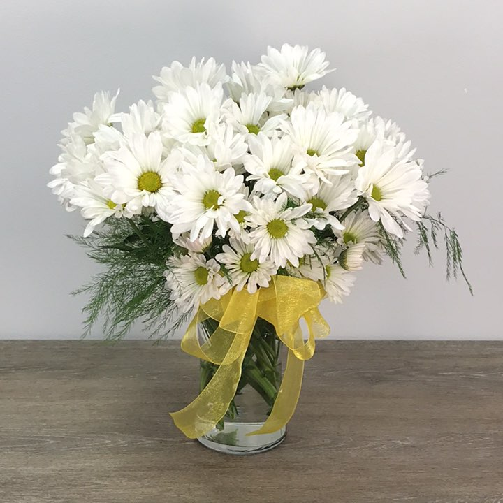 Front Porch Daisies