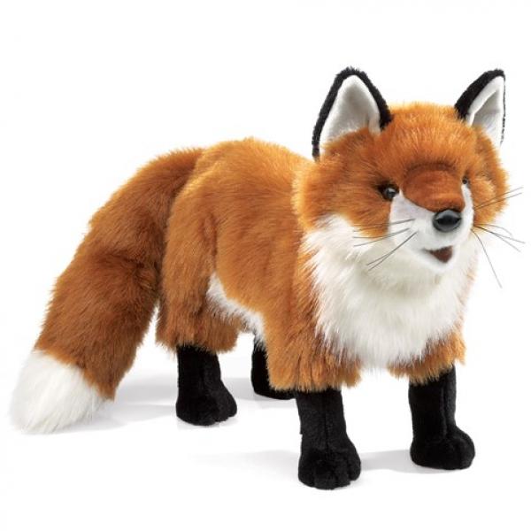Red Fox Standing