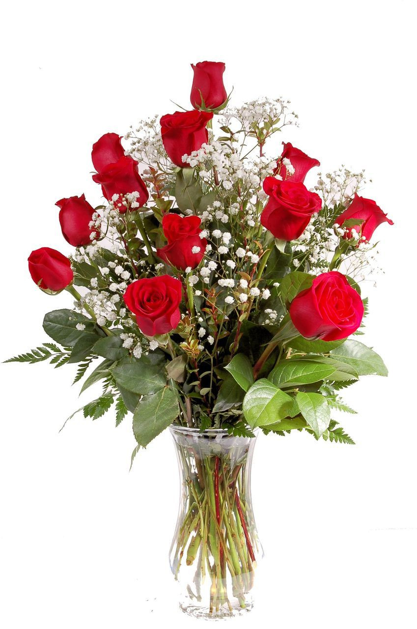 Dozen Red Roses With Babys Breath