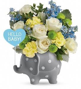 Hello Sweet Baby Blue
