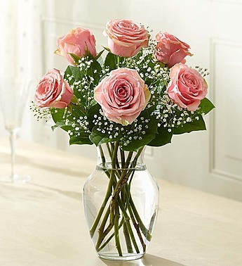 Six Premium Long Stemmed Pink Roses