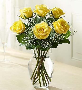 Six Premium Long Stemmed Yellow Roses