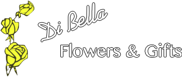 Dibella flowers gifts flowers dibella flowers gifts negle Choice Image