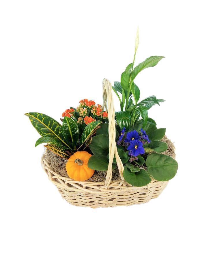 Fall Garden Basket As Shown
