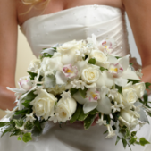 "The FTD® White on White™ Bouquet is a collection of nature's finest white blooms to help you say your ""I Do's"" in style. White roses, Cymbidium Orchids, hydrangea, and stephanotis are accented with a variety of lush greens and tied together at the stems with a ivory woven edge grosgrain ribbon to create a bouquet full of interest and appealing texture, giving you that classic bridal look.  Approx. 12 x 13"