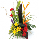 A slash of colors from tropical islands- The tropical rainbow is the perfect choice for a variety of occasions. Note: tropicals such as bird of paradise and others vary insofar as availability.  Substitutions of flowers that create the same tropical look and feel will be necessary.
