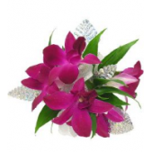 The purple dendrobian orchid wristlett is appropriate for winter balls, junior proms and senior balls!  Orchids are also available in White.  Trim type and color varies.  We suggest you visit our store to create a one of a kind wristlett that coordinates with your dress.