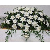 The Gardenia Casket Cover. Gardenias are the most fragrant flowers and this custom casket floral cover is among one of the most beautiful.  50 fragrant gardenias are carefully arranged and lovingly placed on the top of the casket.  After the service, those expressing sympathy can take a gardenia home as a thoughtful remembrance.