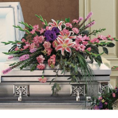 The Stargazer Casket Spray features beautiful stargazer lilies along with complimentary flowers to celebrate ones life.