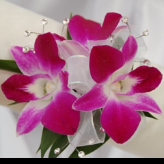Fremont Flowers creates beautiful wrist corsages with orchids